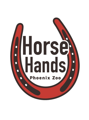Horse Hands Level 1 (Ages 7-14)